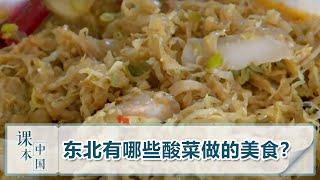 [跟着书本去旅行]东北有哪些酸菜做的美食?| 课本中国