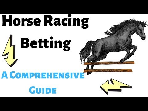 Horse Racing Betting Strategies | How To Win At Horse Racing - A Comprehensive Guide