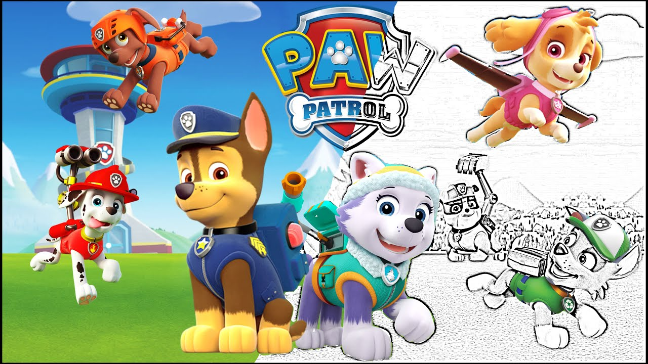Paw patrol coloring pages skye and everest - Paw Patrol Coloring Book Skye Chase Rocky Everest Episode Show Surprise Egg And Toy Collector Setc