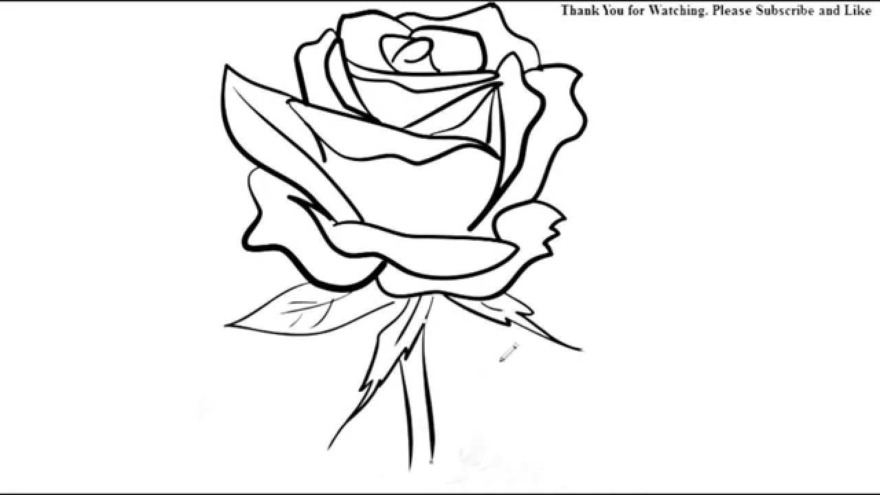 Line Drawing Flower Images : How to draw a rose flower easy line drawing sketch youtube