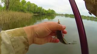 Классическая рыбалка на удочку с поплавком(Супер уловистая удочка на карпа и карася. Боковые кивки, мормышки. Заказываем здесь http://mikhalych.com/ Сумасшедши..., 2015-05-07T20:18:59.000Z)