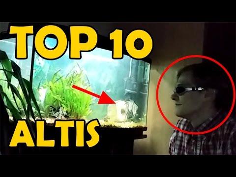 TOP 10 ALTIS