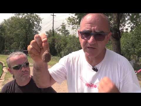 MILO Storioni con la Roubaisienne