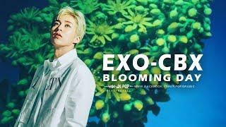 EXO-CBX _ Blooming day _ Arabic Sub _ الترجمة العربية