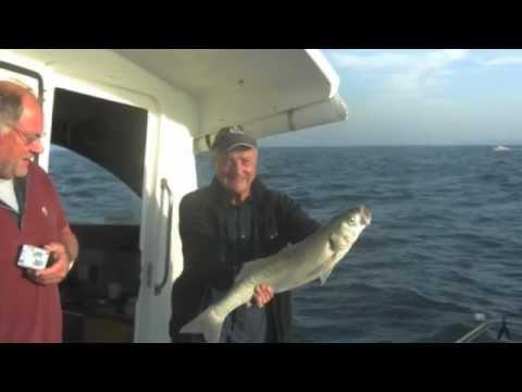 sea fishing on anglo dawn 111 at salcombe
