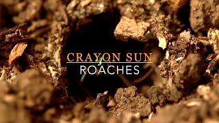 Crayon Sun : Roaches