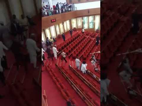 Video of How Nigeria Senate Mace Was Stolen in National Assembly
