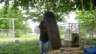 """how To"" Make Yourself Dizzy On A Tire Swing!"