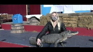 Kacey McKinnon holds an Alligator named Spike at SeaWorld San Diego