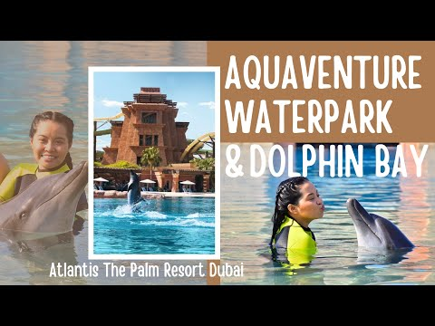 AQUAVENTURE WATERPARK | DOLPHIN BAY DUBAI | ATLANTIS THE PALM RESORT | Jasmin Javier