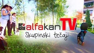 Skupinski tečaji | AlfakanTV