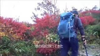 比婆山の紅葉(立烏帽子山・池の段・御陵)