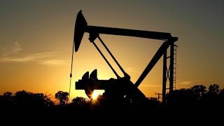 Oil price plunges to 21-year low