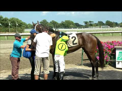 video thumbnail for MONMOUTH PARK 7-12-19 RACE 6