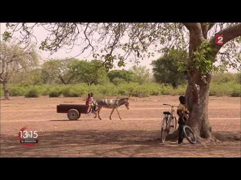 """28 juin 2015 : 13h15 spécial """"climat - Energies pour l'Afrique"""" sur France 2"""