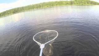 Рыбалка в Карелии, лето 2014(Рыбалка в Карелии, отдых, лодка, щука, вываживание., 2015-01-20T10:14:57.000Z)