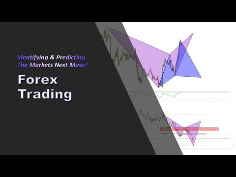 Forex Trading: Identifying & Predicting The Markets Next Move