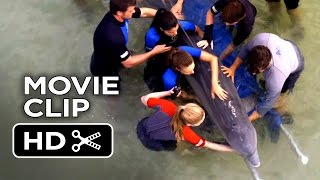 Dolphin Tale 2 Movie CLIP - We