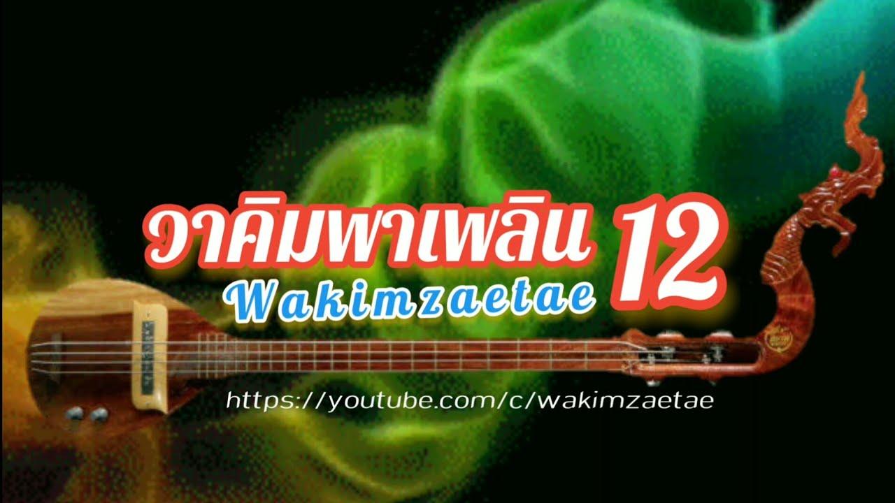 วาคิมพาเพลิน12#พิณซิ่ง#พิณบรรเลง#wakimzaetae