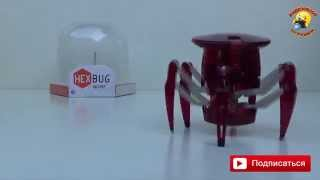 Паук Hexbug Spider микро робот / обзор игрушки