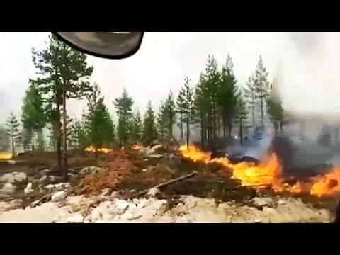 Schweden Brennt