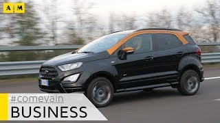 Ford Ecosport, Come va in... Business