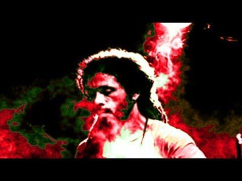 Zion Train - Live at Glastonbury 1995