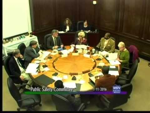 Public Safety Committee January 2016