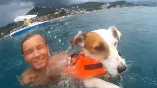 Volt - boat captain / Вольт - капитан