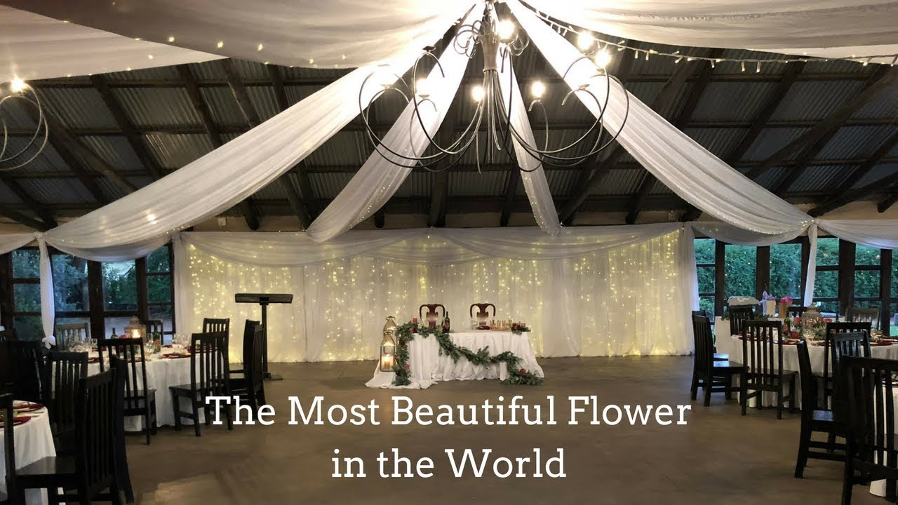 The Most Beautiful Flower In The World Wedding Poem Youtube