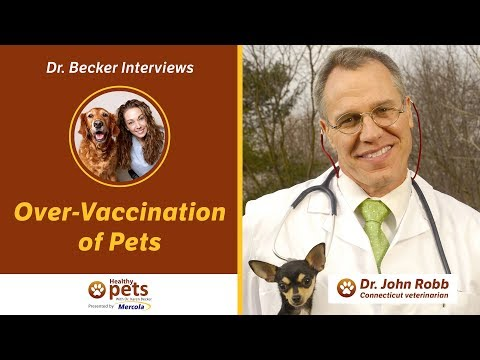 Dr. Becker and Dr. Robb Discuss Over-Vaccination of Pets