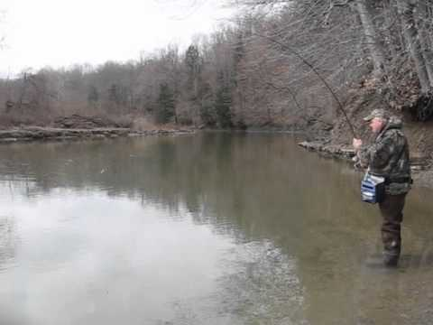 Steelhead Fishing Erie Pennsylvania Elk Creek Water Conditiions April,9 2011