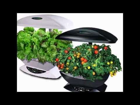 Where to Buy Indoor Herb Garden Kit YouTube