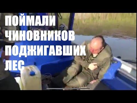 В Усть-Кутском районе высокопоставленных чиновников поймали за поджогами леса