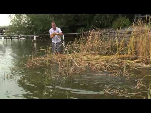 Using WeedRazer Tools Lake Rake