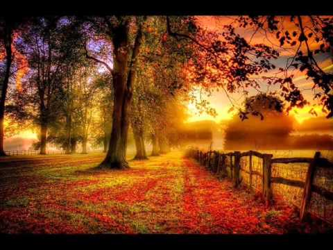 Piano Folk/Neoclassical Ambient Compilation mp3