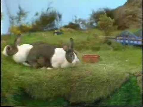 Peter Cook -- Room 101 - Rabbits