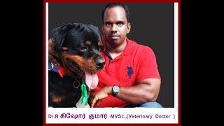 About Alangu, bully kutta  , Ramanathapuram mandhai Dogs  and Science