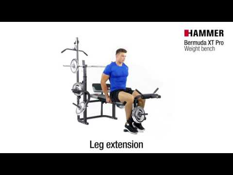 Weight Bench | Bermuda XT Pro | HAMMER