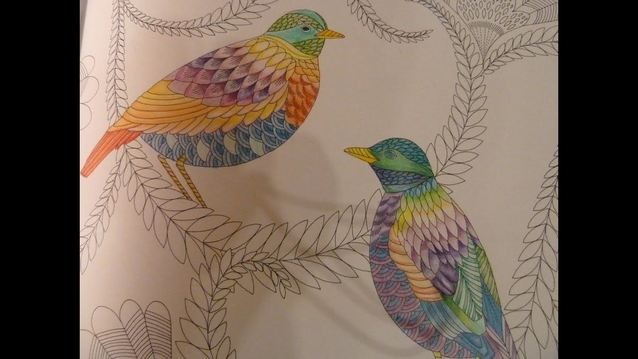 Tropical Wonderland Colouring In Part 2