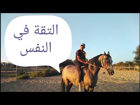 تعليم ركوب الخيل الصعبة لمن يعاني الخوف من الخيول وخيل التبوريدة Youtube
