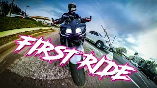 homepage tile video photo for FIRST RIDE  / DNA Filter / TUNE / Quick Shifter /Auto Blipper