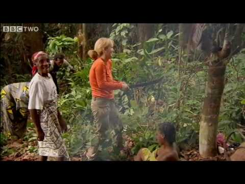 Download Gabon - Tribal Wives episode 2  - BBC Two
