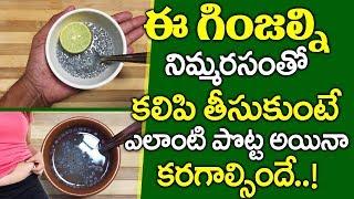 ఈ గింజల్ని ఇలా కనుక వాడితే.. I Belly Fat Reduce Drink I Weight Loss Tips I Everything in Telugu