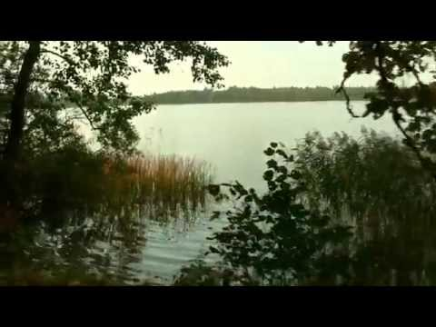 Продаю земельный участок в Иваново Невельского района