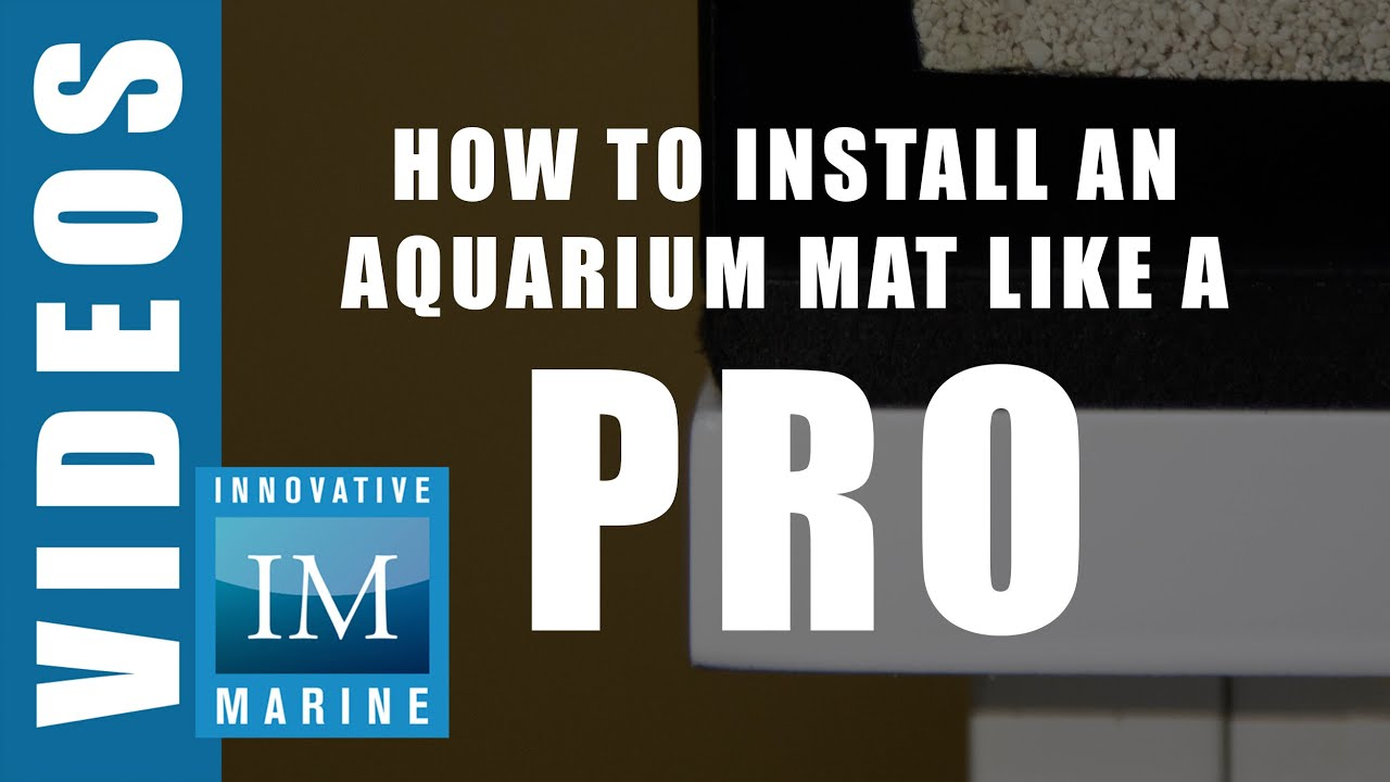How to Install an Aquarium Mat like a Pro