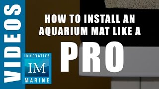 How to Install an Aquarium Mat like a Pro