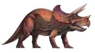 Información sobre el Triceratops - http://dinosaurioss.com/cretacic...