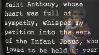 Video The Unfailing Prayer to Saint Anthony download MP3, 3GP, MP4, WEBM, AVI, FLV April 2018
