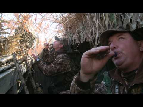 G3 Sportsman TV - Clinton Ducks
